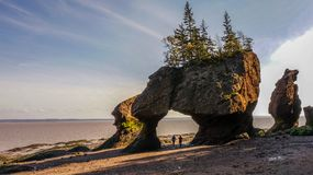 Bay of Fundy in East Canada. Hopewell Rocks Royalty Free Stock Photos