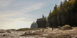 Bay of Fundy in East Canada. Hopewell Rocks Stock Images