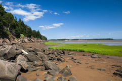 Bay of Fundy Shoreline Stock Photography