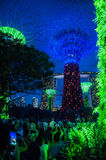 Bay gardens Singapur. Lighting effects and leds at Bay gardens in Singapore royalty free stock photo