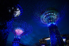 Bay gardens Singapur. Lighting effects and leds at Bay gardens in Singapore royalty free stock images