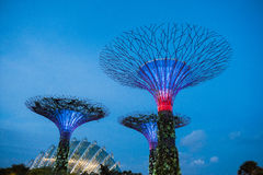 Bay gardens Singapur. Lighting effects and leds at Bay gardens in Singapore stock images