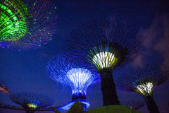 Bay gardens Singapur. Lighting effects and leds at Bay gardens in Singapore royalty free stock photography