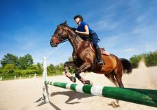 Bay horse with jockey girl jumping over a hurdle Royalty Free Stock Photography