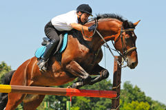 Bay horse and rider over a jump Royalty Free Stock Photos