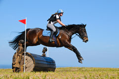 Bay horse stretching over a barrel jump at horse show Royalty Free Stock Photo