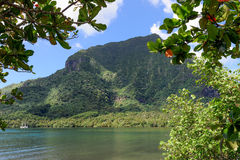 Bay in the interior of Moorea Island Stock Image