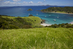 Bay of Islands Stock Photography