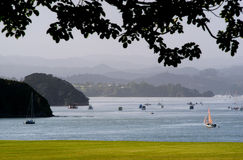 Bay of Islands, New Zealand Royalty Free Stock Image
