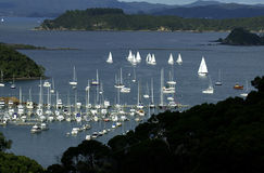 Bay of Islands, New Zealand Royalty Free Stock Photos