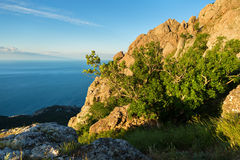 Bay Laspi Black Sea. View from the top of mountain Ilyas Kaya. Royalty Free Stock Image