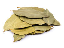 Bay Laurel Leaves Royalty Free Stock Images