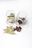 Bay leaf and allspice Royalty Free Stock Images