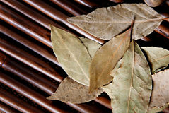 Bay leaf on bamboo. Stock Photo