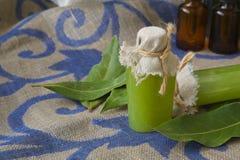 Bay leaf body scrub. A bottle of bay leaf body scrub. Bay leaves in the background stock images