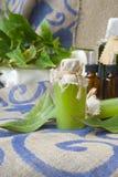 Bay leaf body scrub. A bottle of bay leaf body scrub. Bay leaves in the background royalty free stock photos