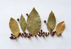 Bay leaf, cloves, pepper seasoning , aroma Royalty Free Stock Images
