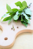 Bay leaf on cutting board Stock Image