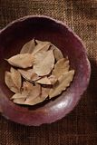 Bay leaf, dried herb in a bowl. Bay leaf, dried herb in a ceramic bowl, top view Royalty Free Stock Image