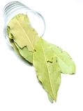 Bay leaf in a glass Stock Images