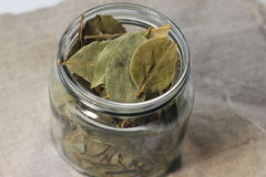 Bay leaf. In a glass jar. soft focus. bokeh Stock Photography