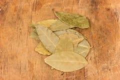 Bay leaf herb Stock Photo