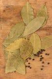 Bay leaf herb Stock Image