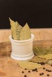 Bay leaf herb Stock Images