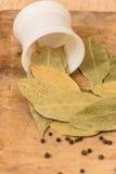 Bay leaf herb Stock Photos