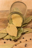 Bay leaf herb Stock Photos
