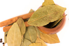 Bay leaf herb on white Stock Image