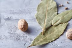 Bay leaf, nutmeg and spices on white textured background, top view, close-up, selective focus. Scented condiment. Aromatic spices. Exotic ingredient. Indian Royalty Free Stock Images