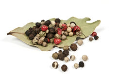 Bay leaf and pepper Royalty Free Stock Photography