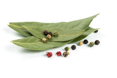 Bay leaf and pepper Royalty Free Stock Image