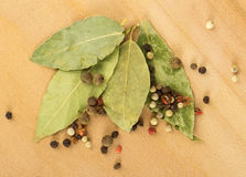 Bay leaf, pepper Royalty Free Stock Photos