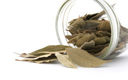 Bay leaf poured out of the jar. Royalty Free Stock Image
