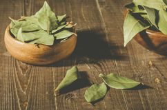 bay leaf in a two wooden bowl/spices of bay leaf in rural style on a wooden table. selective focus royalty free stock image