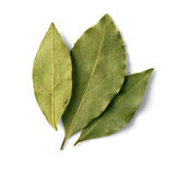 Bay leaf on white. Background with clipping path Royalty Free Stock Photography