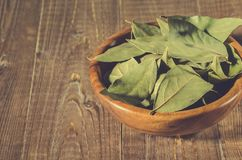 Bay leaf in a wooden bowl/bay leaf in a wooden bowl on a wooden background. selective focus royalty free stock photography