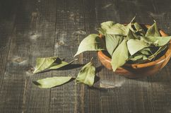 Bay leaf in a wooden bowl/bay leaf on a wooden surface dark wooden background royalty free stock photography