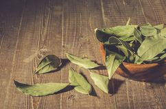 Bay leaf in a wooden plate/spices of bay leaf in rural style on a wooden background. Toned royalty free stock images