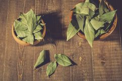 Bay leaf on a wooden surface in a two wooden bowl/spices of bay leaf in rural style on a wooden table. Top view. Leaves background food ingredient green organic stock image