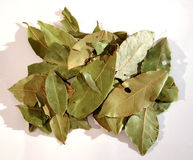 Bay leafs 2. Spices - Dried bay leafs stock image
