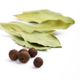 Bay leafs and black pepper Stock Photography