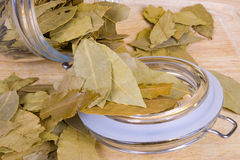 Bay leaves. Photo shot of dry bay leaves background Stock Photos