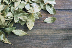 Bay leaves background Royalty Free Stock Photo