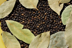 Bay leaves and black peppre. Close up of the bay leaves and black pepper Stock Photo