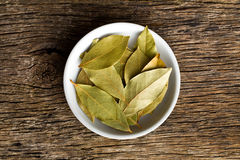 Bay leaves in ceramic bowl stock photography