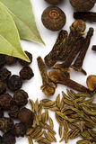 Bay leaves, cloves and black pepper Royalty Free Stock Image