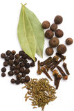 Bay leaves, cloves, caraway and black pepper Stock Images